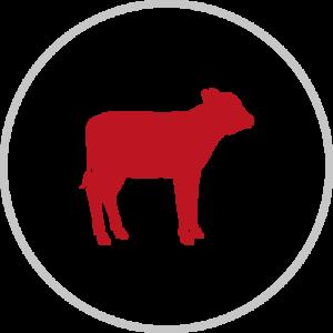 Icone de veau - Micha Food